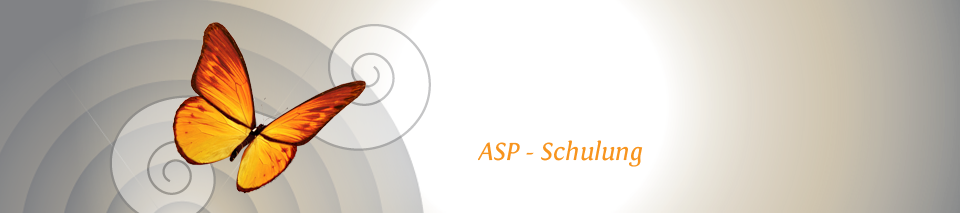 ASP* – Schulung